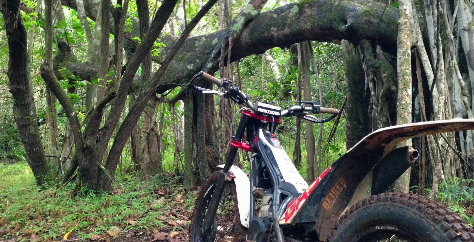 What is a Trials Bike?